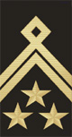 Master Chief Petty Officer OR-9