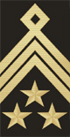 Master Chief Petty Officer of Navy OR-9