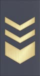 Chief Master Sergeant of Air Force OR-9