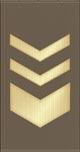 Sergeant Major of Land Forces OR-9