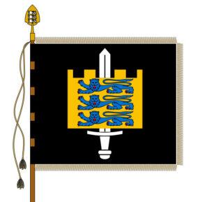 Maaväe lipu kujutis